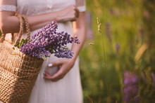 Women Hands Holding A Basket With Wildflowers