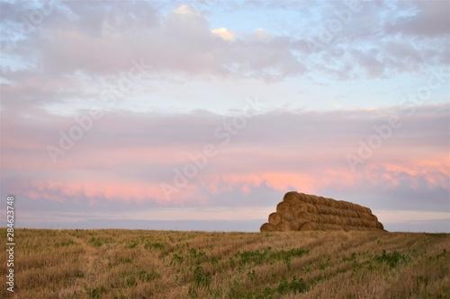 Fotografija  stogi siana