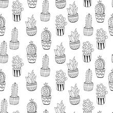 Seamless Cactus Pattern For Kids Design. Succulent Wallpaper Print. Vector Repeat Doodle Illustration.