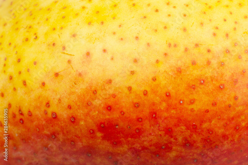 Pear skin surface texture pattern close up detail macro. Abstract background. - 284635905
