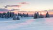 canvas print picture - Sonnenuntergang über verschneiten Tannen