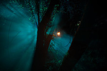 Horror Halloween Concept. Burning Old Oil Lamp In Forest At Night. Night Scenery Of A Nightmare Scene.