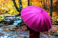 Girl Under Pink Umbrella In The Forest