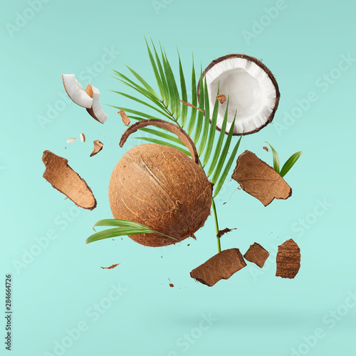 Foto auf Leinwand Palms Flying in air fresh ripe whole and cracked coconut with palm leave
