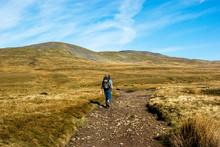 A Man Walking Towards Ingleborough Mountain. Yorkshire Dales National Park