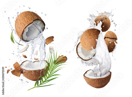 Montage in der Fensternische Palms Creative Collection set with Flying in air fresh ripe whole and cracked coconut with milk splashes