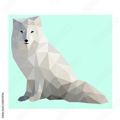 Low poly wild vector  polar fox Fototapete