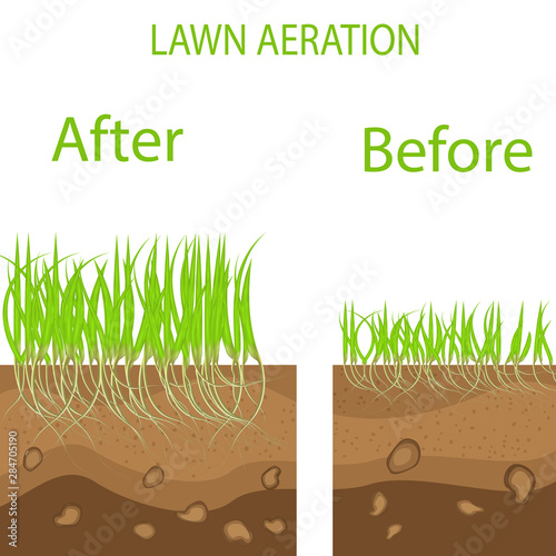Lawn stage aeration illustration Slika na platnu
