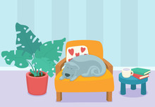 Living Room Interior Design With Sleeping Dog And Furniture: Chair, Pillows, Plant And Table With Books And Cup. Modern Design Interior. Flat Style Vector Illustration.