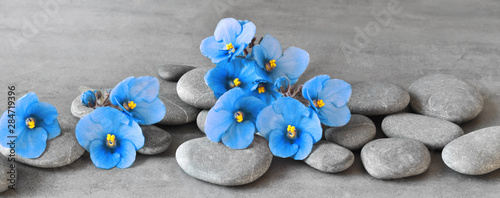 Mata na ścianę w kuchni  kamienie-zen-i-fioletowe-kwiaty-na-szarym-tle