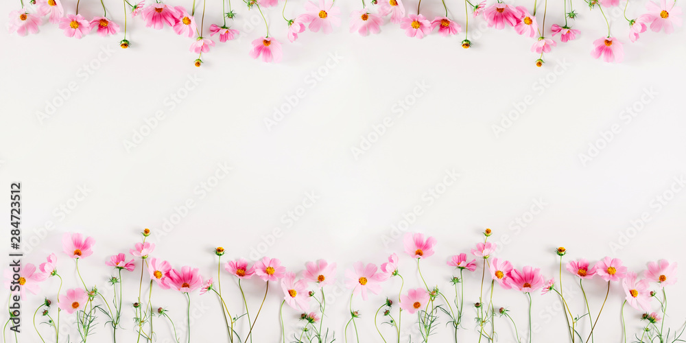 Fototapety, obrazy: Beautiful flowers composition. Pink cosmos flowers on white background. Flat lay, top view, copy space