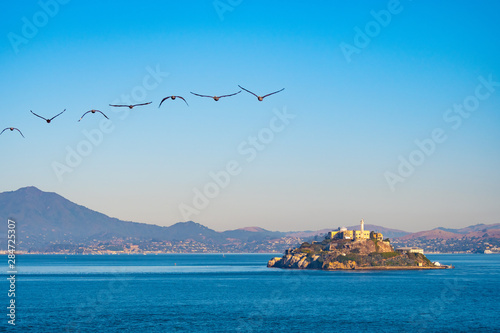 Obraz na plátně  Alcatraz Prison Island in San Francisco Bay, offshore from San Francisco, California, a small island with military fortification and federal prison, now a famous national historical landmark