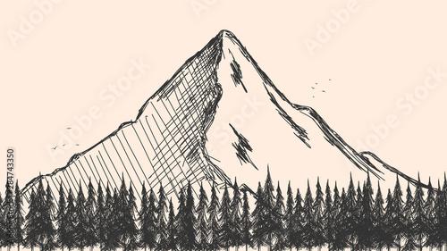 recznie-rysowane-szkic-lasu-sosnowego-i-gor-tlo-wektor