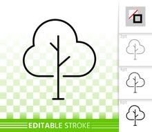 Geometric Birch Tree Simple Black Line Vector Icon