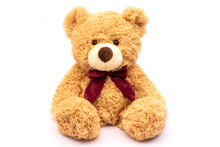 Brown Teddy Bear Isolated On W...