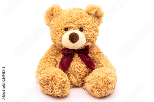 Fotografie, Tablou  Brown teddy bear isolated on white background.