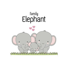 Elephant Family Father Mother ...