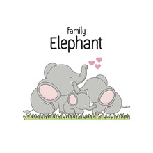 Elephant Family Father Mother And Baby.