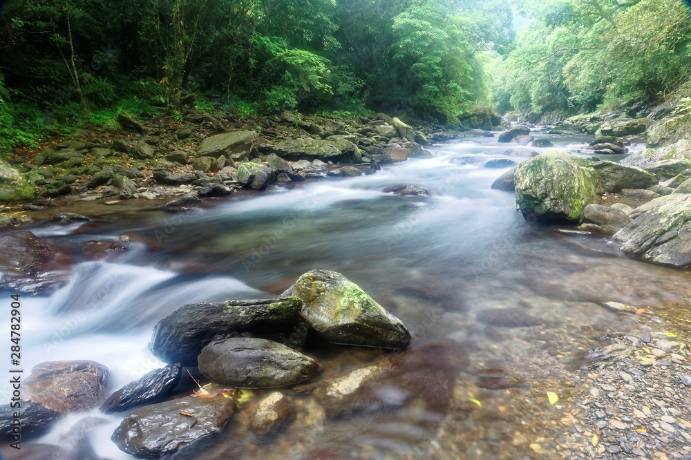 Fototapety, obrazy: Scenic view of a cool refreshing stream cascading in a mysterious ravine of lush forest with sunlight shining through lavish greenery in summer ~ Beautiful river scenery of Taiwan