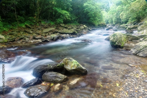 Wall Murals Forest river Scenic view of a cool refreshing stream cascading in a mysterious ravine of lush forest with sunlight shining through lavish greenery in summer ~ Beautiful river scenery of Taiwan