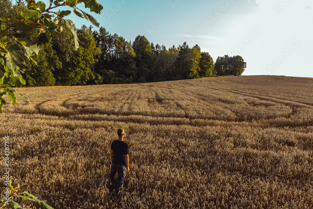 Fototapeta Aerial view to young man standing in field with trees in sunset, Czech republic