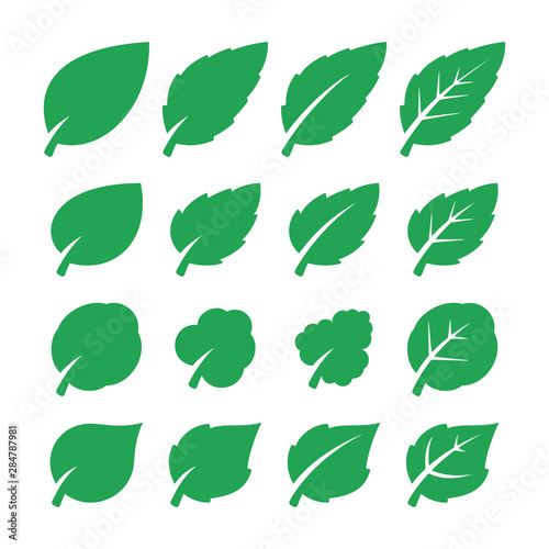 Green leaf set. Fototapete