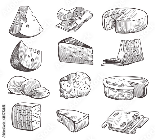 Fototapeta Sketch cheese. Various types of cheeses. Fresh cheddar, feta and parmesan dairy snack. Hand drawn retro vector isolated set obraz