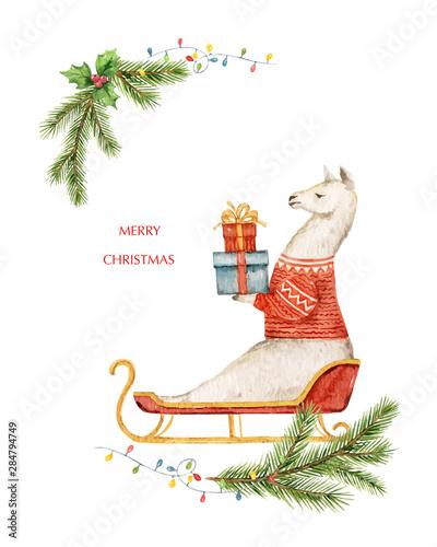 Foto op Aluminium Hoogte schaal Watercolor vector Christmas card Llama or alpaca and fir branches.