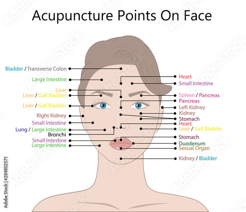 Active acupuncture points on the face,  Illustration Isolated on white backgroun Wallpaper Mural