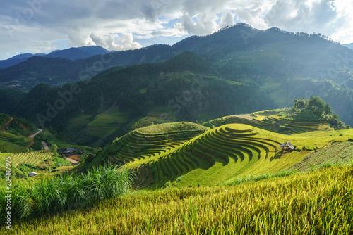 Fotobehang Rijstvelden Terraced rice field in harvest season in Mu Cang Chai, Vietnam. Mam Xoi popular travel destination.