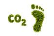 canvas print picture - ökologischer Fussabdruck