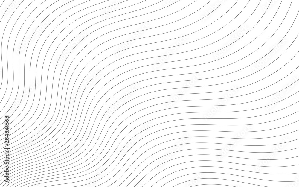 Fototapeta Abstract wavy background. Thin line on white.