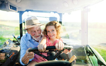 Senior Farmer With Small Grand...
