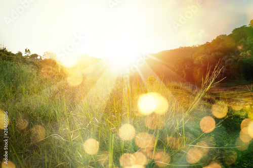 Fotobehang Zonsondergang Beautiful sunrise in the mountain..Meadow landscape refreshment with sunray and golden bokeh.