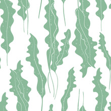 Vector Seaweed Texture Seamless Pattern Background.