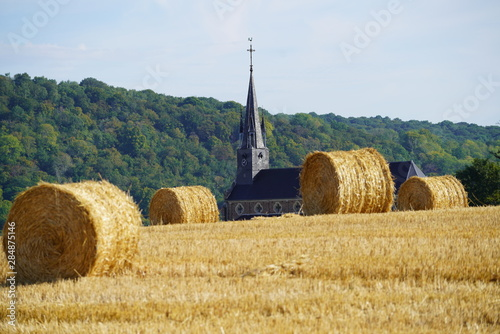 Fotografie, Tablou  Paysage Campagne 583