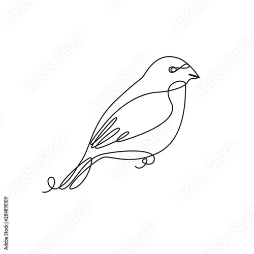 Photographie Bullfinch one line drawing on white isolated background