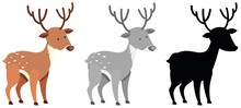 Set Of Colored And Silhouette Deer
