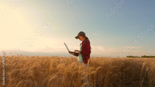 Fototapeta Farmer girl works with a tablet in wheat field, plans a grain crop. agriculture concept. Woman agronomist studies wheat crop in field. entrepreneur in the field of planning his income. obraz