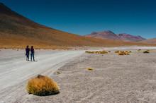 Girl Is Looking At Desert In U...