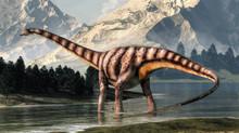 Diplodocus Was A Sauropod Dino...