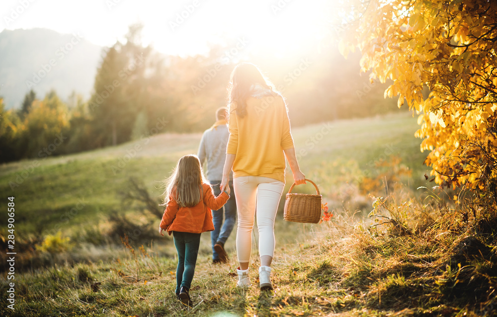 Fototapeta A rear view of family with small child on a walk in autumn nature.