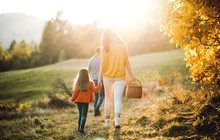 A Rear View Of Family With Small Child On A Walk In Autumn Nature.