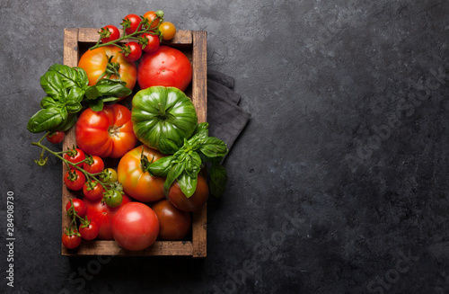 Obraz Fresh garden colorful tomatoes - fototapety do salonu