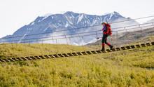 A Woman Walking Across A Swing Bridge, Gulkana Glacier Trail, Delta Mountains, Alaska Range, Alaska, USA