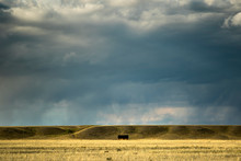 Stormy Sky Over Farming Fields...