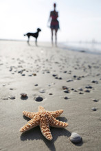 Germany, Lower Saxony, East Frisia, Langeoog, Sea Star And Silhouette Of A Woman And Her Dog At The Beach