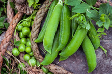 Close-up Of Fresh Green Peas A...