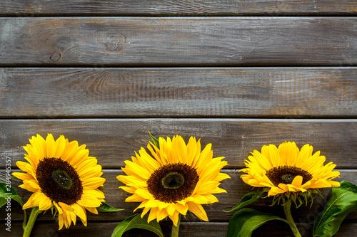 Poster Zonnebloem Sunflower frame on wooden background top view mock up