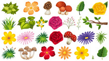 Large Group Of Isolated Objects Theme - Flowers
